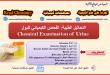 التحاليل الطبية: الفحص الكيميائي الشامل لعينات البول Urine